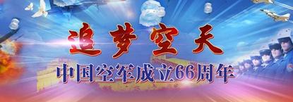 隆重纪念中国空军成立66周年
