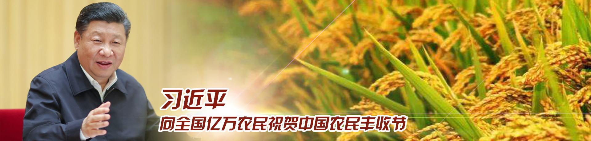 习近平向全国亿万农民祝贺中国农民丰收节