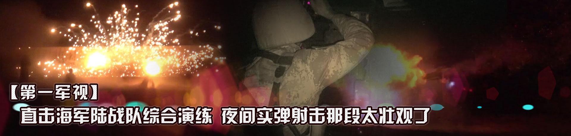 【第一军视】直击海军陆战队综合演练 夜间实弹射击那段太壮观了