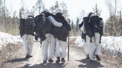 """瑞典陆军""""北博滕团""""寒区训练 男女士兵混编"""