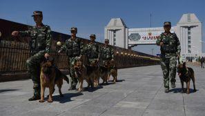 组图:边检官兵每天与警犬为伴共护国门