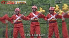 20150614《军旅文化大视野》大森林的一群兵