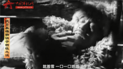 《微观二战》第十三期:抗日英雄杨靖宇牺牲之谜