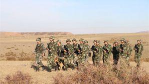 军队与武警联手在中哈边境巡逻 萌犬开路
