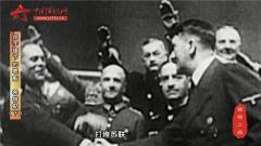 《微观二战》第五十期:卍字旗下的罪魁(下)