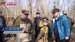 """20151220《军迷淘天下》:""""鸡冠山密营战痕"""""""