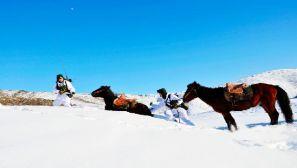战马伴我巡边关 马毛带雪汗气蒸