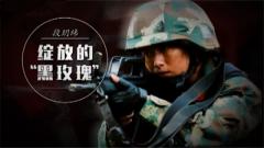 """20161124《军旅人生》绽放的""""黑玫瑰"""""""