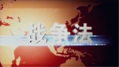 【精武讲堂】战争法(十):作战主体的法律制度