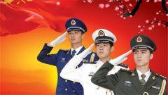 致敬2016年解放军和武警部队牺牲的烈士们