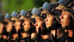 """人民军队在枪林弹雨中愈打愈强,靠的是一个""""干""""字"""
