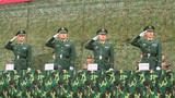 首长庄重的向参战队伍还礼。
