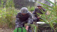 陆军某集团军组织工兵实爆训练 检验综合作战能力