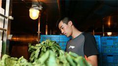 """长期出海新鲜蔬菜如何存放?远望5号船只需""""四步走"""""""