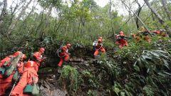 武警武夷山市森林大队:节日里坚守岗位的风景线