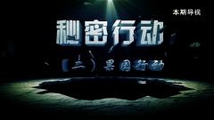 20170225《讲武堂》秘密行动(二)果园行动