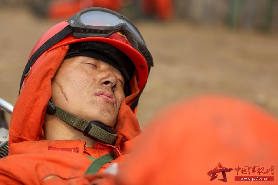 世界睡眠日:为森林卫士最美睡姿点赞