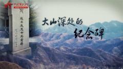 20170409《军迷淘天下》大山深处的纪念碑