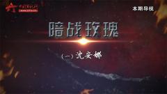 20170429《讲武堂》暗战玫瑰(一)沈安娜