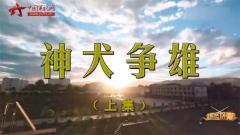 20170507《谁是终极英雄》神犬争雄(上集)