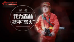 """20170623《军旅人生》我为森林抚平""""怒火"""""""
