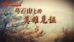 20170806《军迷淘天下》马石山上的英雄见证