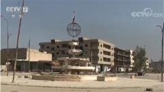 叙利亚政府军向极端组织在叙最后据点推进