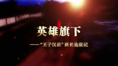 2017年10月26日《军事纪实》英雄旗下(上)