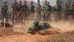 战术场上真打实训  磨砺新兵血性虎气