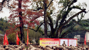 一段新的旅程:学习井冈山精神,筑牢强军之魂