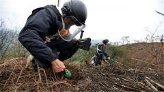 广西边境排雷现场:埋50厘米深小铁丝搜排手都能发现