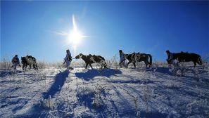 新疆塔城军分区杜拉那拉边防连风雪巡逻掠影
