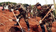 武警·广西:武警官兵义务植树为城市添绿