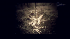 证实日军在华屠杀慰安妇影像首度公开!