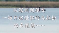 时政微视频:从深圳到雄安