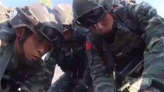 """武警城区特战训练,比""""吃鸡""""还紧张刺激"""
