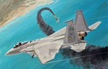 【国际观察】美沙军售 剑指伊朗