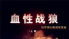 20180415《谁是终极英雄》 血性战狼(上集)