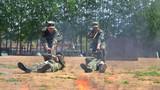 组织战地救护演练。