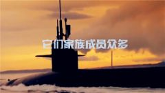 """探秘""""深海幽灵""""—潜艇"""