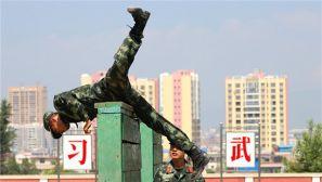 勤训轮换 一组高清大图带你看兵哥哥训练场上的英姿