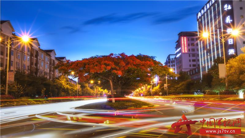 图10:凤凰花夜景。