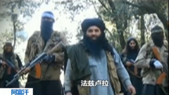 阿富汗官方证实巴基斯坦塔利班头目死于美军空袭