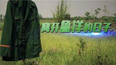 《中国武警》 20180617 离开鲁洋的日子