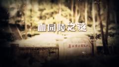 《军迷淘天下》20180624血园陵之谜