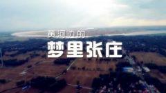 微视频|《黄河边的梦里张庄》
