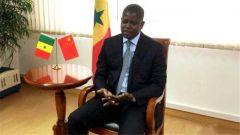塞内加尔驻华大使:中非合作共赢 非洲人民很满意