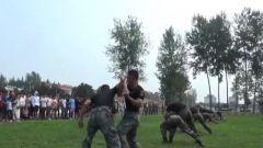 军营开放日:零距离体验军营生活