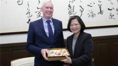 美国对台湾当局两难:挺它?挺烦它?