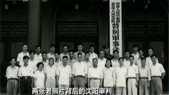 日本投降纪念日:珍贵照片讲述难忘历史